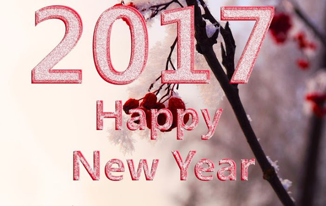 Happy New Year 2017 Wishes For Sister
