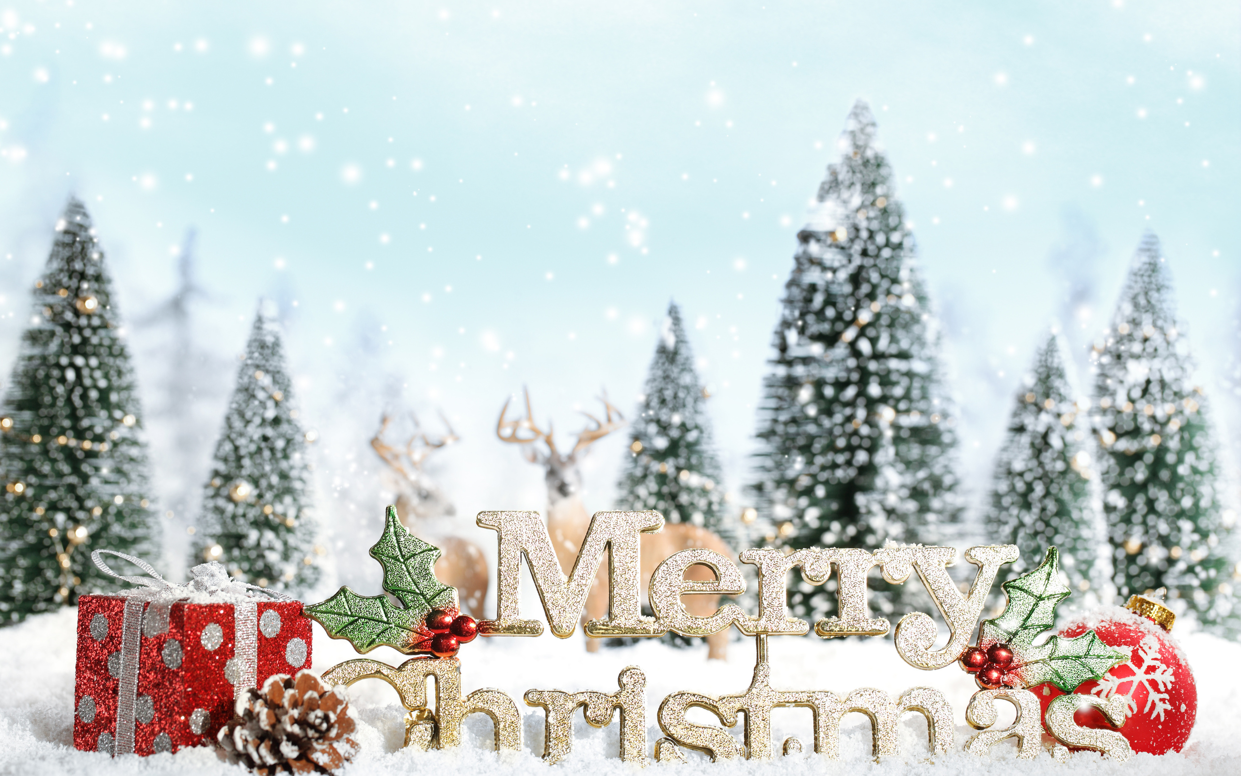 Merry X Mas 2016 HD Wallpaper 2560x1600