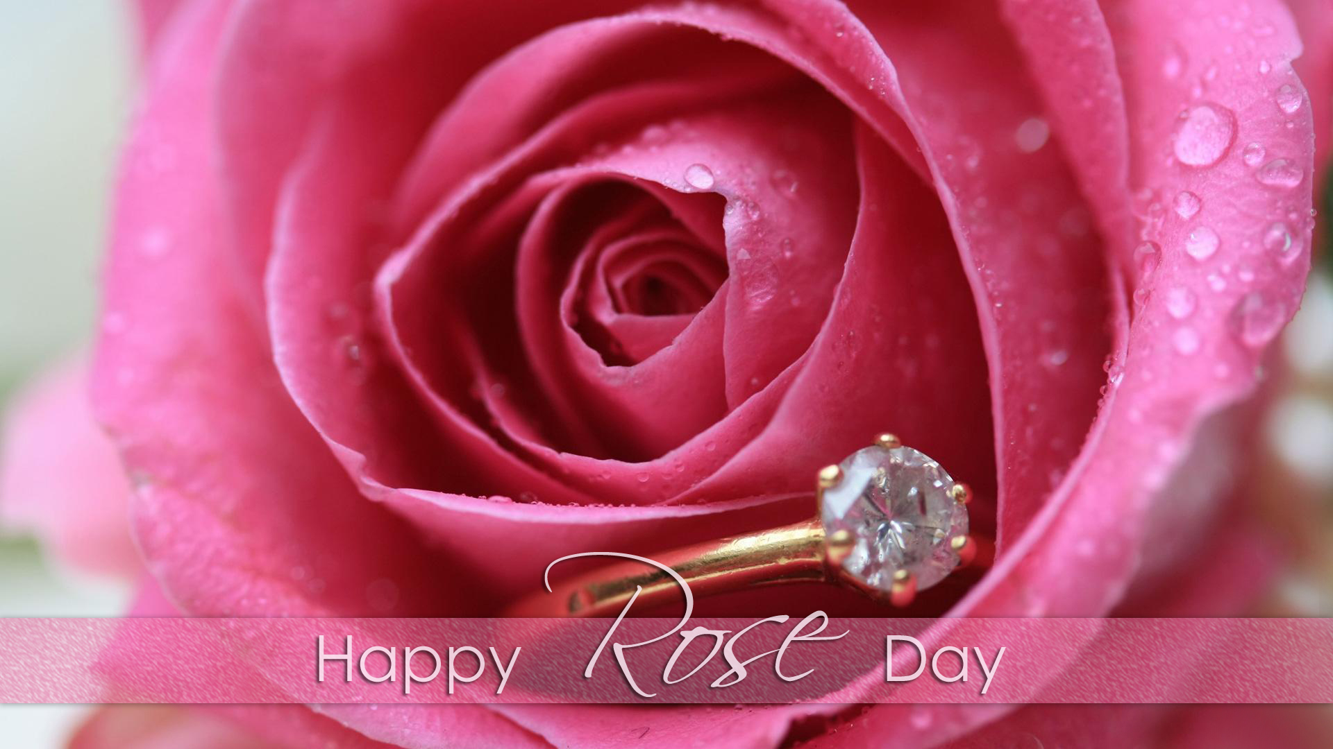 Happy Rose Day 2018 HD Wallpaper Free Download